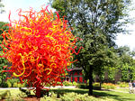 Chihuly at Maker's