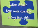 Working the Puzzle for Autism