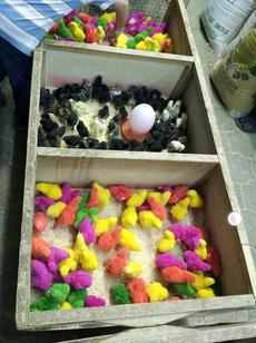"<div class=""source"">Submitted by Carl Turner</div><div class=""image-desc"">Carl sent this photo of some colored chicks to his son during Easter.  </div><div class=""buy-pic""><a href=""/photo_select/26887"">Buy this photo</a></div>"