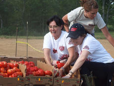 """<div class=""""source"""">Stephen Lega</div><div class=""""image-desc"""">Shannen Doherty and Holly Marie Combs ride on the cart carrying tomatoes between competitors. Jenna Cook is behind them on the cart. </div><div class=""""buy-pic""""><a href=""""http://web2.lcni5.com/cgi-bin/c2newbuyphoto.cgi?pub=015&orig=07-30-14_tomato_conflict_pic_4.jpg"""" target=""""_new"""">Buy this photo</a></div>"""