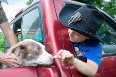 "<div class=""source"">Photo by Bramel Professional Photography</div><div class=""image-desc"">Austin Myers is pictured playing with Lolly Dog while in Turtleman's truck. </div><div class=""buy-pic""></div>"
