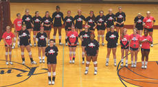 """<div class=""""source"""">Stephen Lega</div><div class=""""image-desc"""">The Lady Knights participate in a demonstration during their breast cancer awareness night on Oct. 1. The volleyball team raised $400 for cancer research during that match. </div><div class=""""buy-pic""""><a href=""""http://web2.lcni5.com/cgi-bin/c2newbuyphoto.cgi?pub=015&orig=10-9_vball_pregame_pic.jpg"""" target=""""_new"""">Buy this photo</a></div>"""