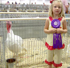 """<div class=""""source"""">Photo submitted</div><div class=""""image-desc"""">Gracie Benningfield, 5, showed this grand champion turkey at the 2011 Kentucky State Fair. She is the daughter of Mike and Nikki Benningfield of Lebanon.</div><div class=""""buy-pic""""></div>"""