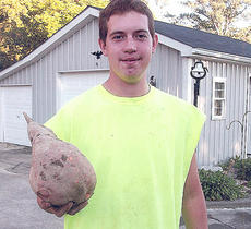"<div class=""source"">Photo submitted</div><div class=""image-desc"">Jordan Moore is pictured holding a sweet potato that weighed 5 ½-pounds and was 11-inches long and19-inches around. It was grown in Marion County. </div><div class=""buy-pic""></div>"