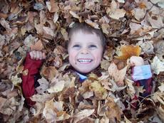 "<div class=""source"">Stevie Lowery</div><div class=""image-desc"">Pictured is my son, Owen, playing in the leaves.</div><div class=""buy-pic""><a href=""/photo_select/2372"">Buy this photo</a></div>"
