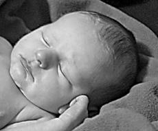 """<div class=""""source""""></div><div class=""""image-desc"""">Jeff and Tatum Robbins of Lebanon announce the birth of an 8-pound, 5-ounce son, Dylan Michael Robbins, born Jan. 27, 2011, at Spring View Hospital, Lebanon. Maternal grandparents are Michael and Robyn Howard of Lebanon and the late Shirley Shreve. Paternal grandparents are Elwood Robbins of Bell County and the late Helen Robbins.</div><div class=""""buy-pic""""></div>"""