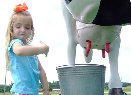 "Grace Finley, 3, checks out the water she squirted on her arm while ""milking"" the model cow during one of the times it wasn't raining during the Marion County Fair."