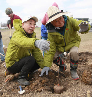 Toyoda Gosei Chairman Hajime Wakayama and Professor Akira Miyawaki of Yokohama National University plant a seedling during Sunday's afforestation event.