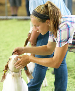 Meredith Bartley models focus and intensity while showing her goat.