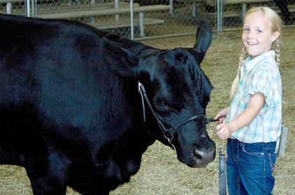 Katie Cecil, 7, had no trouble keeping control of her cow, though several little ones struggled to keep them still.
