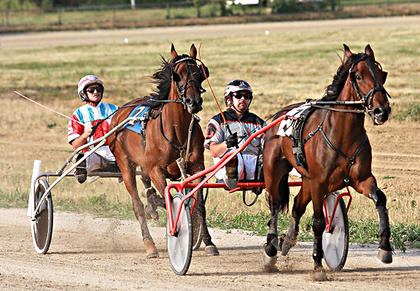 Lil Miss Brinley, driven by Tyler Shehan, gets the win in the first race during the Marion County Fair July 3. Moma Jean's Crown, driven by Ronnie Guhy, finished second.