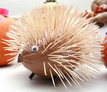 This porcupine pumpkin is a bit prickly.