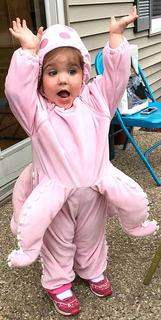 Evelyn Scott, 2, dressed as an adorable octopus for Halloween.