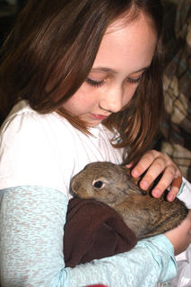 Olivia Mattingly holds a baby bunny in the petting zoo.