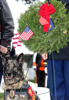 Sgt. Beyco WMD Retired Marine Military Service Animal participated in the ceremony and her wreath was in memory of those who served and are serving in the United States Marine Corps. 