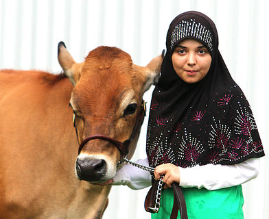 Fatimah Alabusalim of Campbellsville and her cow enjoy the cool temperatures outside before competing in the Marion County Fair's Dairy Show.