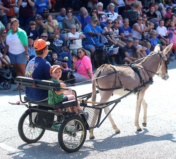 Josiah Mattingly and Willett Thompson use some old-fashioned transportation in the Pigasus Parade Saturday afternoon.