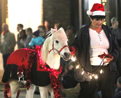 Several miniature horses were in the Dickens Christmas Parade Friday evening.