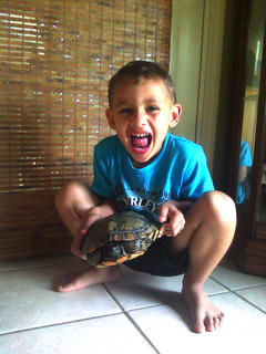 Hayden Lee Brockman, 4, impersonates the Turtleman with his own turtle! Brockman is the son of Tiffany Clark and Tyler Brockman.