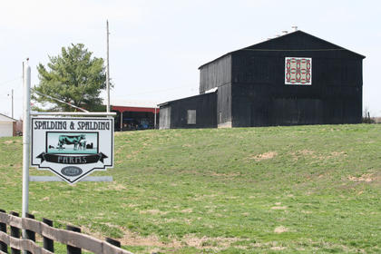 The quilt patch at the Spalding and Spalding Farm features a Double Wedding Ring pattern.