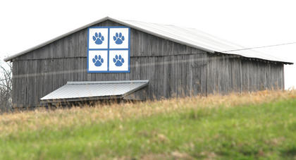 Wildcat fans should keep an eye open when traveling Danville Highway for this patch on Mary Lou Hamilton's barn.