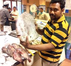 "<div class=""source"">Submitted by Carl Turner</div><div class=""image-desc"">Carl Turner took this photo at a fish market in Kuwait. </div><div class=""buy-pic""></div>"