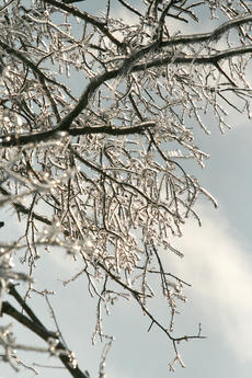 """<div class=""""source"""">Stephen Lega</div><div class=""""image-desc"""">Be aware of falling ice as temperatures rise this weekend.</div><div class=""""buy-pic""""><a href=""""/photo_select/3699"""">Buy this photo</a></div>"""