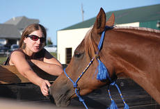 """<div class=""""source"""">Stephen Lega</div><div class=""""image-desc"""">Jill Erisman of Bloomington, Ind., reaches out to Razeena during the Al Khampsa Convention open house which was held at the AraBliss Arabians horse farm of Bob and Nancy Bliss.</div><div class=""""buy-pic""""><a href=""""/photo_select/8026"""">Buy this photo</a></div>"""