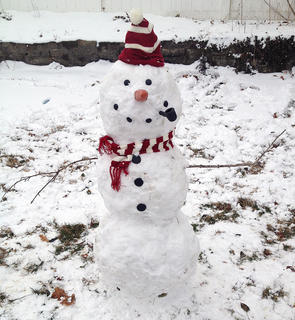 This snowman was created by Amelia Mattingly, Ryan Mattingly and Caleb Clark on Jan. 25.