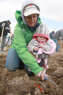 Cheryl May covers a seedling's roots with dirt while holding her granddaughter, Brylee May, 8 months.