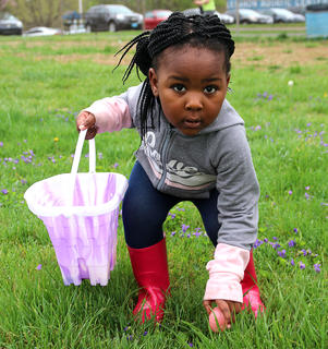 Lachelle Furmon, 2, carefully picks up an Easter egg. She was very smart for wearing her fashionable rain boots.