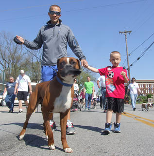 Rocky, a boxer, is a bit a blur walking ahead of Ross Wright and his son, Cambron, 5.
