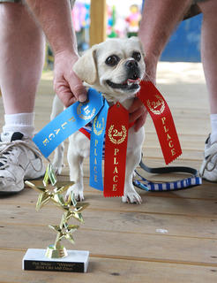 Sophie won the overall title in the pet show Friday at Old Mill Days.