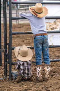 The two little cowboys are watching their dad and the professional bull riding competition