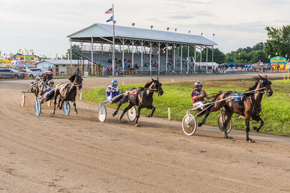 Photos by Don Sniegowski/Special to the Enterprise Professional photographer Don Sniegowski shared this photo with the Enterprise that he took during harness racing at the fair.