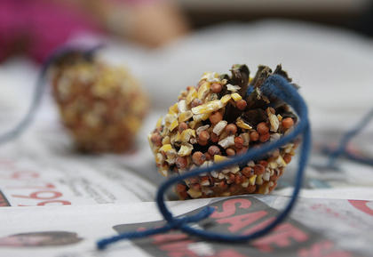 Participants in Amber Perkins' demonstration learned how to make pine cone bird feeders.