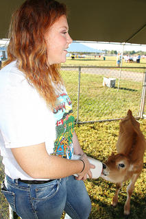 Marion County High School FFA student Kalei Cox feeds a calf while talking to students about animal safety.