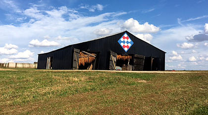 Mary Ann Ohsol took this photo of one of Marion County's many barn quilts. This one is located on Wimsatt Road near Raywick.