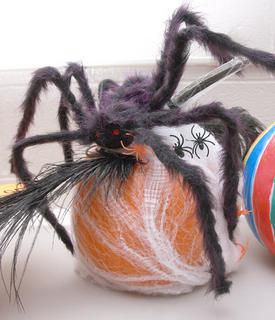An oversized spider has claimed this pumpkin as a place to rest.