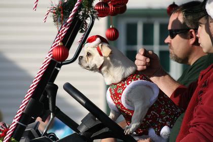 Bradfordsville hosted its own Christmas celebration Saturday afternoon, starting with a parade.  Even Sophie, a pug mix, was dressed in the Christmas sprit in the Bradfordsville Country Store's golf cart. Deceased Marion County Sheriff's Deputy Anthony Rakes was named the honorary grand marshal of this year's parade.