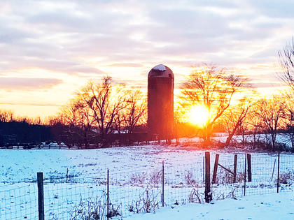 A beautiful snow day on the farm.