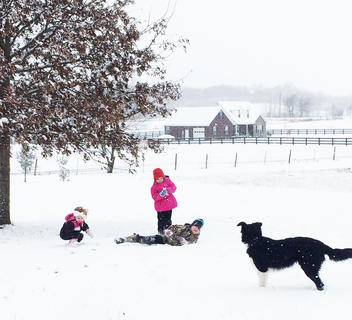 Lora Morgeson, Tatum Morgeson and Dean Morgeson have a snowball fight. Jack the dog is keeping a close eye on them.