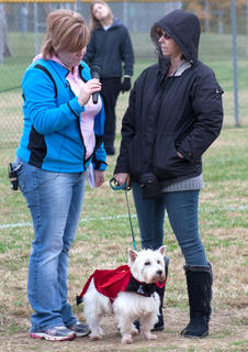 Standing in the cold, Ruth Barlow and her dog Dexter are interviewed during one of the afternoon's competitions.