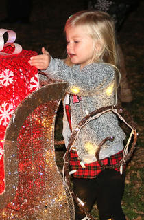 Ann Clair Thomas takes at look at the Christmas decorations during Christmas in the Park on Wednesday.