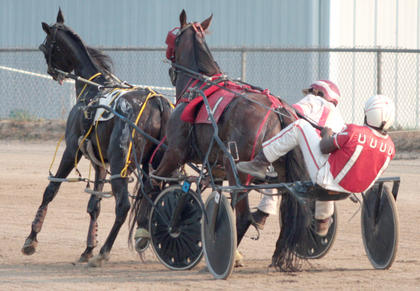 The first harness race on Wednesday was declared a no contest after Major Camey (No. 1), driven by William Bell, and Doc's Constitution, driven by Kevin Kane, got tangled together in the opening turn.
