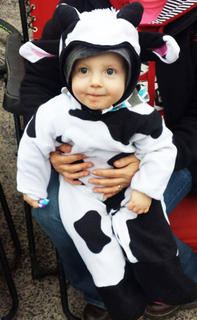 Landon Blandford dressed as a cow during Green River Trick or Treat in 2014.