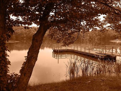 Jessica Portman took this photo at Sportsman's Lake in Calvary.