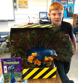 "West Marion Elementary School student Johnathan Abrams is pictured with his Peacock-themed pumpkin from the ""Peacock's Amazing Feathers"" book."