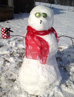 Audrey and Gregory Greenwell of Loretto built this snowman.
